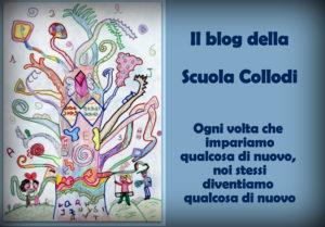 blog-collodi-def